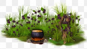 Bubble Cluster Pre Writing Ideas - Flowerpot Grasses Herb Purple PNG