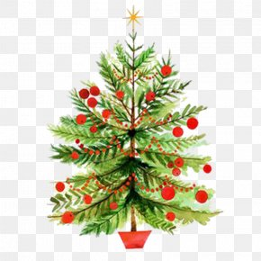 Christmas Tree Pictures - Christmas Tree Christmas Card Clip Art PNG