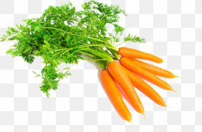 Carrot - Carrot Produce Vegetable Food Vegetarian Cuisine PNG
