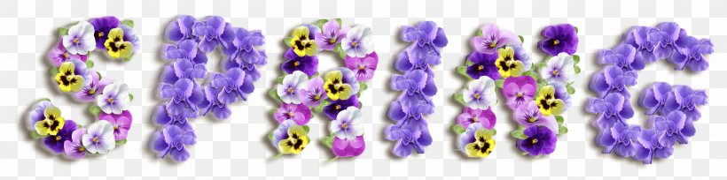 Spring Text Flowers, PNG, 3506x873px, Violet, Body Jewelry, Color, Easter, Flower Download Free