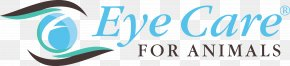 EYE CARE - Veterinarian Ophthalmology Eye Care For Animals Advanced Veterinary Care Pet+E.R. PNG
