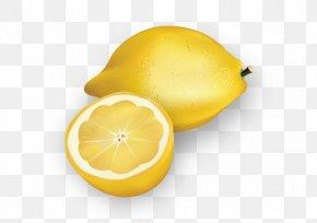 Vector Lemon - Lemon Euclidean Vector Download Illustration PNG