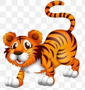 Cartoon Tiger - Stock Photography Royalty-free Animal Clip Art PNG