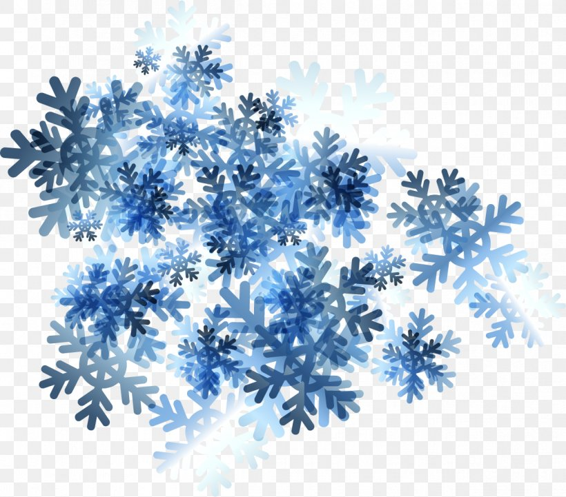 Snowflake Icon, PNG, 1201x1057px, Snowflake, Blue, Branch, Flower, Search Engine Download Free
