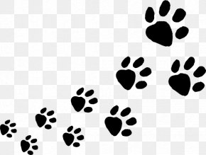 Animal Footprints Cliparts - Dog Cat Animal Track Paw Clip Art PNG