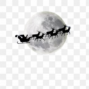 Santa Elk Sled - Santa Claus's Reindeer Santa Claus's Reindeer Christmas Moon PNG
