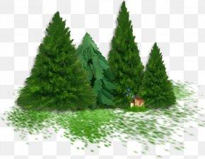 Santa Claus - Clip Art Santa Claus Christmas Day Yandex New Year PNG