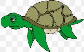 Sea Turtle Cliparts - Green Sea Turtle Free Content Clip Art PNG