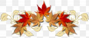 Summer To Autumn - Autumn Season Child Time Kindergarten PNG