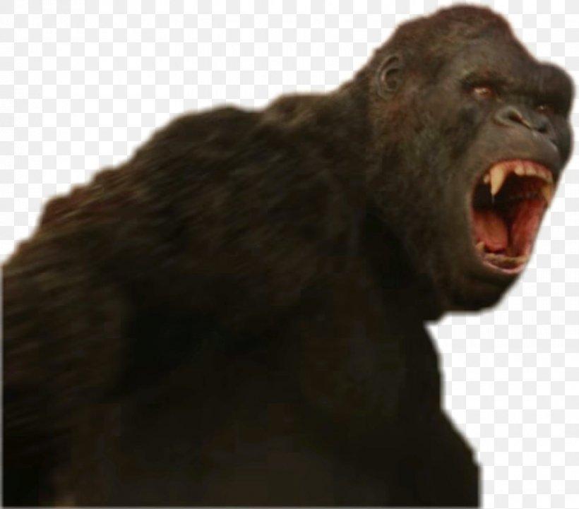 King Kong Ape Western Gorilla DeviantArt Common Chimpanzee, PNG, 850x748px, 2017, King Kong, Aggression, Ape, Art Download Free