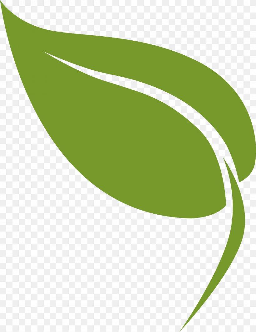 Green Leaf Logo Plant Line, PNG, 1271x1646px, Green, Leaf, Logo, Plant Download Free
