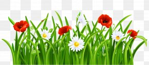Picsart Grass - Clip Art Borders And Frames Openclipart Illustration PNG