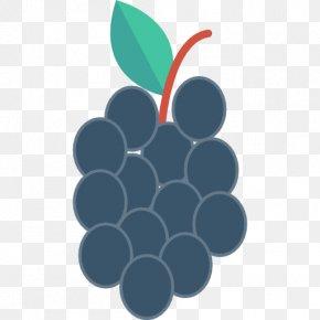 Grape - Grape Fruit Blueberry PNG