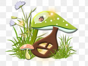 Mushroom - Magic Mushrooms Fungus Lamella Psilocybin Mushroom PNG
