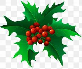Christmas Holly Mistletoe Transparent Clip Art - Mistletoe Christmas Clip Art PNG