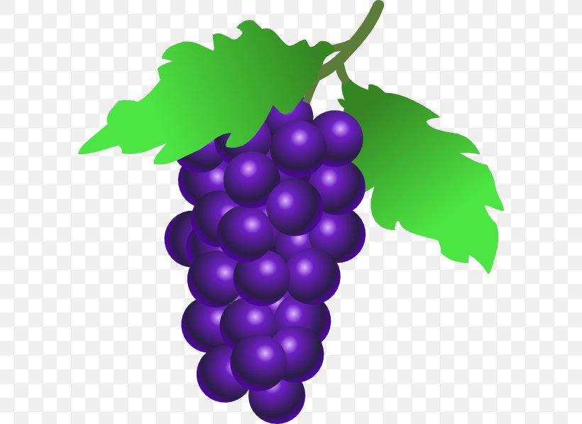 Common Grape Vine Fruit Clip Art, PNG, 2112x1588px, Wine, Berry, Blog, Common Grape Vine, Flowering Plant Download Free