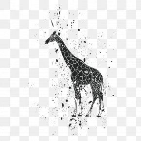 Animal Print - Lion Giraffe Ink Clip Art PNG