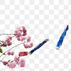 Sakura And Carp Flag - National Cherry Blossom Festival Common Carp PNG