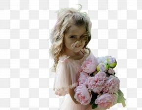 Flower Girl Hydrangea - Pink Flower Cartoon PNG