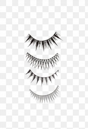 Black Eyelashes - Eyelash Extensions Cosmetics Eye Shadow PNG