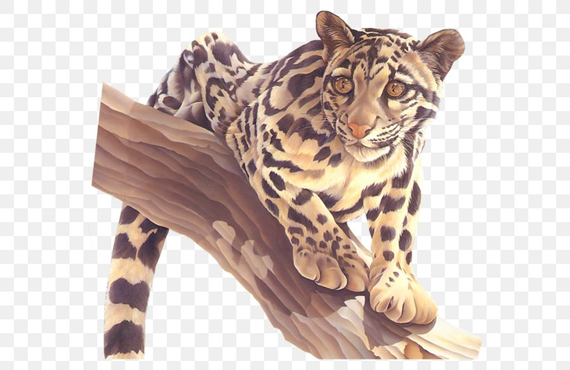 Leopard Tiger Cheetah Jaguar Ocelot, PNG, 600x533px, Leopard, Animal, Big Cats, Carnivoran, Cat Download Free