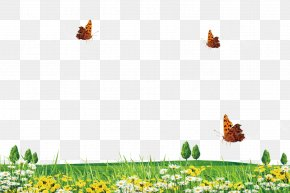 Spring Grass And Grass Border Texture - Download PNG