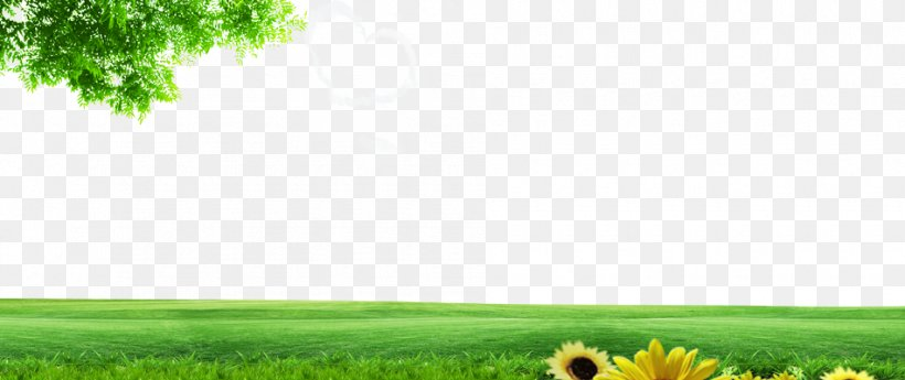 lawn energy grassland nature wallpaper png 950x400px lawn computer daytime energy family download free lawn energy grassland nature wallpaper
