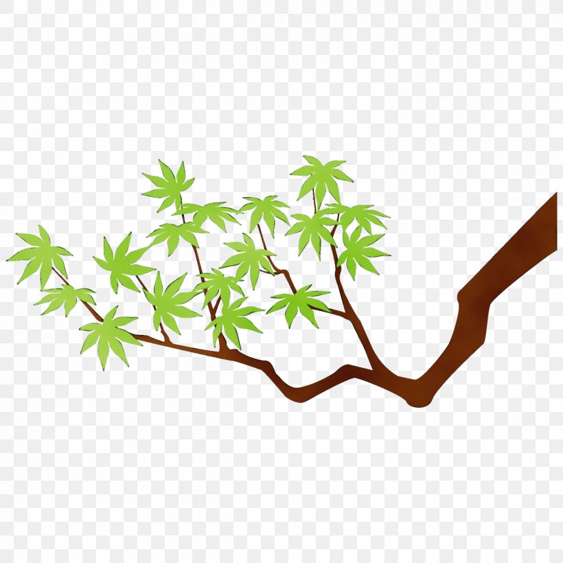 Leaf Plant Branch Tree Plant Stem, PNG, 1200x1200px, Watercolor, Branch, Leaf, Paint, Plant Download Free