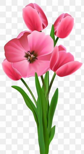 Tulips Transparent Image - Flower Varuthini Ekadashi Clip Art PNG
