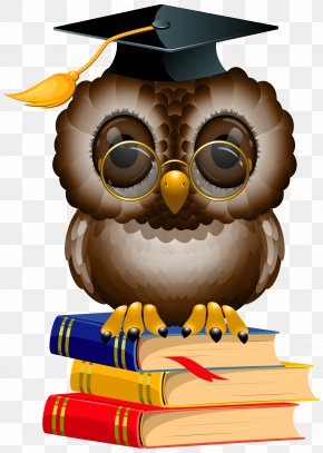 Owl With School Books And Cap Clipart Image - Wise Owl Drinkery & Cookhouse Cafe The Enchanting Owl Tokyo PNG