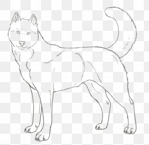 Puppy - Siberian Husky Puppy Colouring Pages Coloring Book PNG