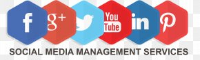 Promotion - Social Media Marketing Digital Marketing Management Social-Media-Manager PNG