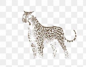 Cheetah - Cheetah Giraffe Leopard Felidae Lion PNG