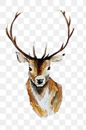Yellow Christmas Deer Picture Material - White-tailed Deer Watercolor Painting Antler PNG