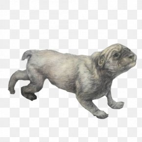 Puppy Pencil Sketch Material Picture - Pug Dog Breed Puppy Non-Sporting Group Drawing PNG