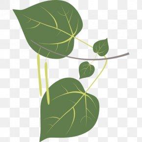 Leaf - Leaf Sweetgum Plant Stem Tree Clip Art PNG