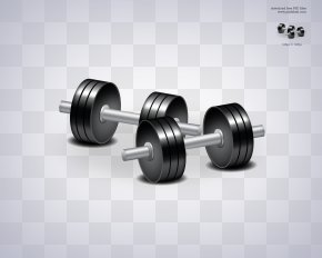 Barbell - Dumbbell Physical Fitness Physical Exercise Weight Training Fitness Centre PNG
