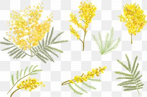 Small Yellow Flower Vector - Flower Euclidean Vector Clip Art PNG
