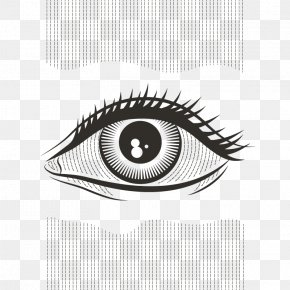Vector Big Eyes - Human Eye Beitxu Studios Visual Perception Science PNG