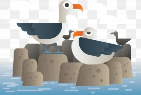 Seagull Animals In The Water - Penguin Illustration PNG