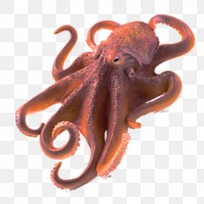 Octopus Free Image - Octopus Clip Art PNG