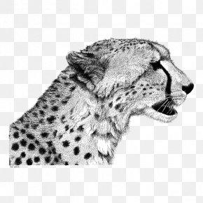 Leopard Pattern - Cheetah Drawing Lion Sketch PNG