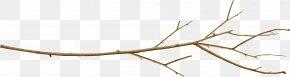 Halberd - Branch Twig Leaf Tree Plant Stem PNG
