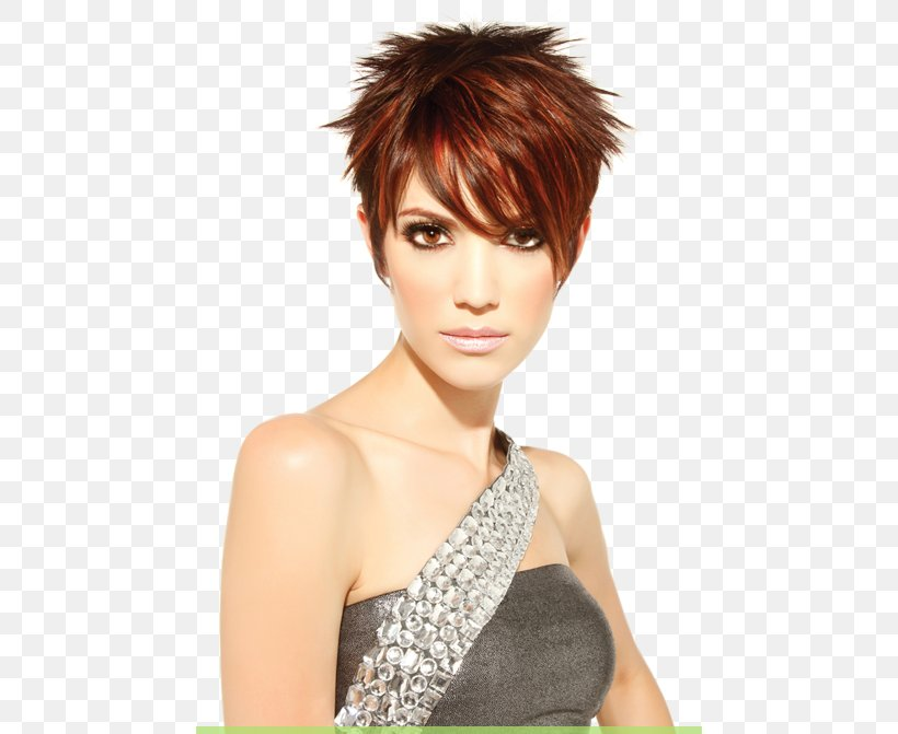 Fine Hairstyle Pixie Cut Short Hair Bob Cut Png 462X671Px Hairstyle Schematic Wiring Diagrams Phreekkolirunnerswayorg