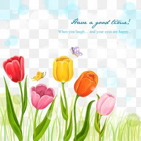 Tulip Flowers Card Background Material - Tulip Flower Illustration PNG