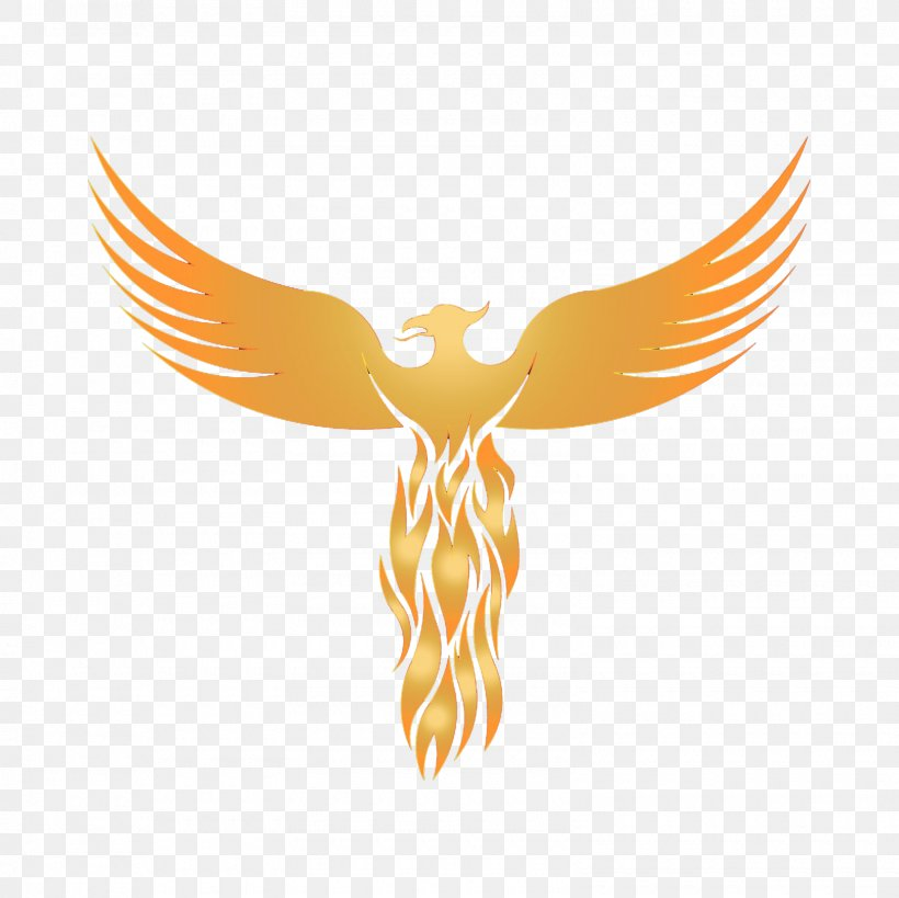 Logo Phoenix Graphic Design Sticker Png 1600x1600px Logo Art Beak Bird Bird Of Prey Download Free