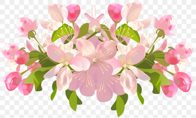 Flower Spring Clip Art, PNG, 8000x4826px, Flower, Blossom, Branch, Cherry Blossom, Cut Flowers Download Free