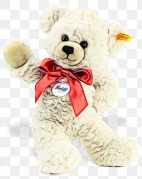 Plush Bear - Teddy Bear PNG