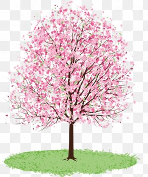 Spring Trees Cliparts - Tree Cherry Blossom Spring Clip Art PNG