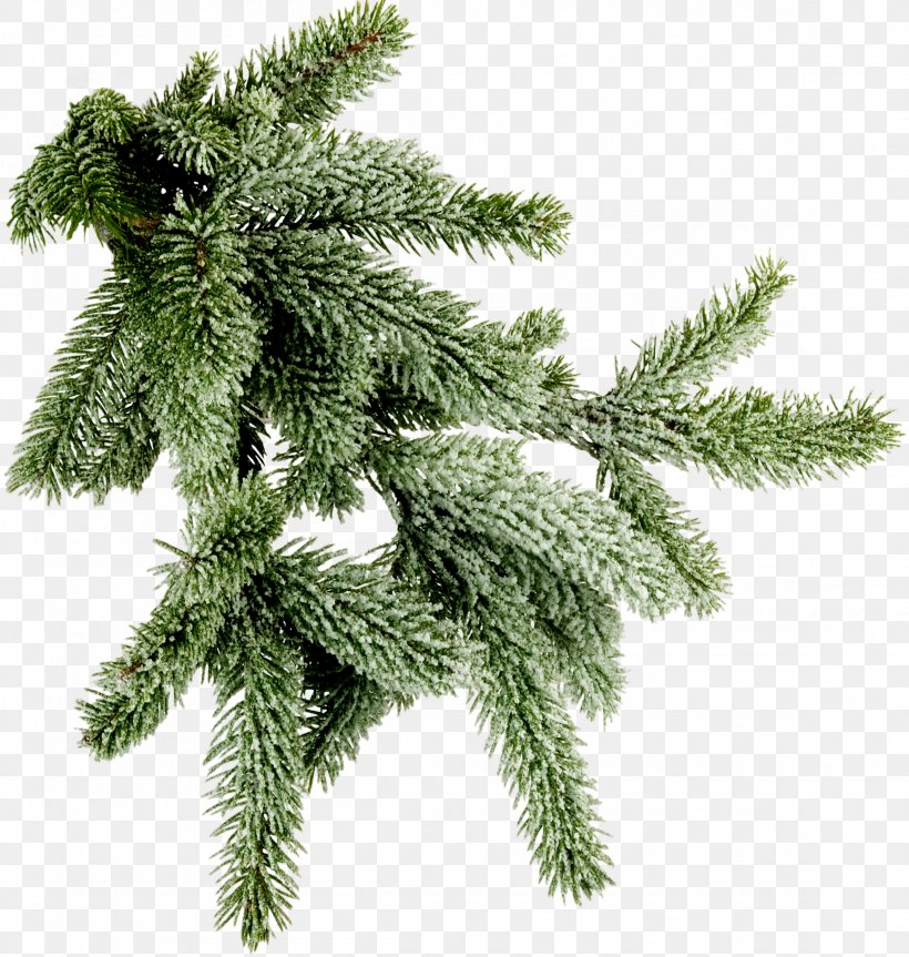 Clip Art Stock Photography Image Christmas Day Tree, PNG, 2310x2432px, Stock Photography, Branch, Christmas Day, Christmas Decoration, Christmas Ornament Download Free